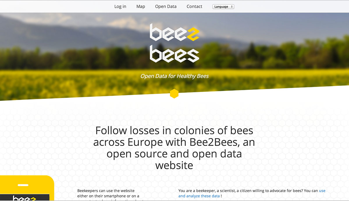 bee2bees